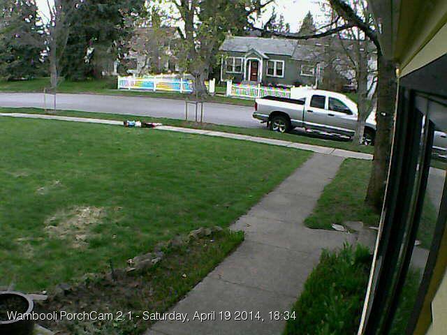 April 19. Some kids are playing near the sidewalk. This is one of the last images snapped by the old PorchCam 2.1.