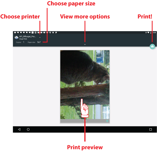 Figure 3. Working the Print screen on an Android.